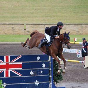 horses-banner